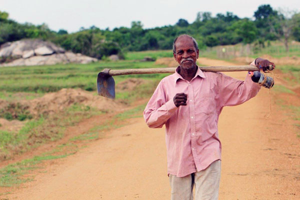 Farmers use the road daily to access their fields.